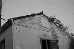 DSC_0069 (Cristianbe) Tags: blackwhite messina rudere torrefaro messine farosuperiore casamulino