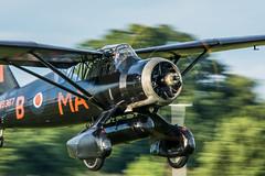 _DSC4043-14 (Ian. J. Winfield) Tags: plane flying aircraft aeroplane airshow ww2 athome shuttleworth westland soe lysander raf worldwar2 worldwartwo royalairforce oldwarden