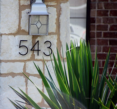 Photography Challenge 191 of 365 (McKenzie's Photography) Tags: light 3 plant brick leave stone architecture cacti landscape outside four three aloe texas outdoor 5 five tx 4 number vera address entry rockwall