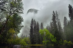 Gathering Clouds Spring Storm, El Capitan (Yosemite National Park) (thor_mark ) Tags: 3000feethighgranitemonolith 900meterhighgranitemonolith alongbanksofmercedriver canvas capturenx2edited cathedralbeachpicnicarea centralyosemitesierra clouds cloudsacrossyosemitevalley cloudsaroundmountains cloudsinvalley cloudsinyosemitevalley colorefexpro day7 elcapitan elcapitanhiddeninclouds evergreens hiddeninclouds hillsideoftrees landscape lookingnw lowclouds mercedriver mountains mountainsindistance mountainsoffindistance mountainside nature nikond800e outside pacificranges portfolio project365 river salathwall sierranevada stormclouds totokonoolah trees triptopasoroblesandyosemite yosemitenationalpark yosemitevalley yosemiterittersierranevada california unitedstates