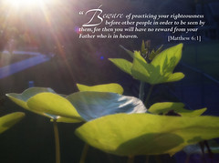 Matthew 6-1 (dianabog ) Tags: bible scripture sunflare theword
