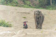 _RJS8184 (rjsnyc2) Tags: richardsilver richardsilverphoto richardsilverphotography nikon nikond810 d810 laos intrepidtravel asia mekong river mekongriver water travel travelphotographer travelphotography