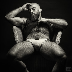 Sitting Bear (Mr. Bear Austria 2016, Gabriel) (WF portraits) Tags: irq aut blackandwhite black white man male model portrait jockstrap hairy veryhairy beard bald body pose sitting chair
