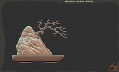 Juniper Root Over Rock Progress (cube.republic) Tags: bonsai zbrush zsphere juniper penjing mesh secondlife cuberepublic