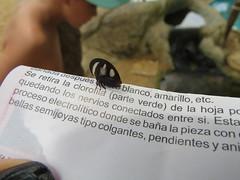 Brasil - Salvador de Bahia - Praia do Forte, Projeto Tamar (Babe el puerquito) Tags: brasilsalvadordebahiapraiadoforte projetotamar