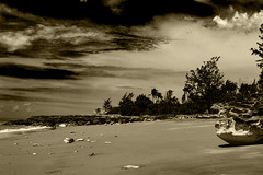 Nightcliff Beach, Darwin (betadecay2000) Tags: nightcliff beach darwin northern territory australia strand australien februar 2014 february top end stand baden wasser meer see sea palmen salzwasser meerwasser wolcken clouds outdoor wolke himmel sepia monochrome chrome mono retro einfarbig