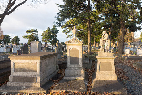 Mount Jerome Cemetery & Crematorium is situated in Harold's Cross Ref-100461