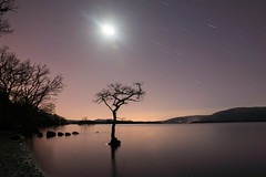 The Lone Tree (Photeelover) Tags: tree water night stars scotland unitedkingdom moonlight lochlomond startrails millarochy