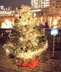 19_Dec_14_JFN_Tree_Biltmore_01(Photo by John Nickerson) 17
