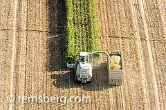 Aerial of harvesting corn silage in Ridgley, Maryland, USA (Remsberg Photos) Tags: usa tractor corn farm grain harvest maryland aerial crop hauling ag trucks feed agriculture silage harvesting ridgley livestockfeed