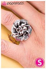 502_ring-silverkit2april-box04