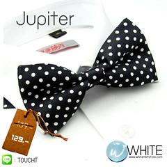 Jupiter - หูกระต่าย สีดำลายขาว จุดเล็ก   (ขายปลีก ขายส่ง รับผลิต และ นำเข้า)