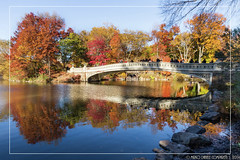 """Colorful reflections <a style=""""margin-left:10px; font-size:0.8em;"""" href=""""http://www.flickr.com/photos/66444177@N04/16114033645/"""" target=""""_blank"""">@flickr</a>"""
