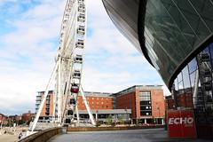 Liverpool-Riverfest233