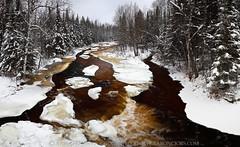 Winter Root Beer - Rapid River (Hwy 41 - Upper Michigan) (Aaron C. Jors) Tags: winter snow ice up michigan waterfalls rivers uppermichigan deltacounty rapidriver michiganwaterfalls uppermichiganwaterfalls rapidshwy41