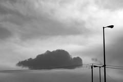 Fallen Cloud ($ALEH) Tags: street city sky blackandwhite bw cloud photoshop iran ایران mashhad khorasan مشهد کبوتر خیابان ابر آسمان سیاهوسفید خراسان sonya7r ilcea7r salehdinparvar صالحدینپرور