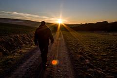 Sunset Impressions (*pipe) Tags: sonnenuntergang weg gegenlicht shootcampat