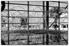 Fountain Dance - DTW Airport, MI (gastwa) Tags: travel blackandwhite bw white black art water fountain landscape airport nikon df scenery michigan detroit andrew full frame fullframe nikkor fx 58mm afs motown f14g gastwirth andrewgastwirth