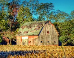 IMG_0018.JPG (Jamie Smed) Tags: rustic hdr green barn sony dslr app jamiesmed iphoneedit snapseed handyphoto blue skies sky trees 2012 farm facebook geotagged geotag rural ohio a200 alpha midwest october autumn fall clintoncounty