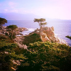 Lone Cypress - Pebble Beach (}{enry) Tags: tree beach pebble lone cypress