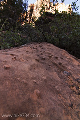 """Sandstone Bumps • <a style=""""font-size:0.8em;"""" href=""""http://www.flickr.com/photos/63501323@N07/16551278657/"""" target=""""_blank"""">View on Flickr</a>"""