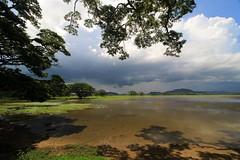 Anche questo  Sri Lanka #insolitamente (#Insolitamente00) Tags: world travel lake colors canon landscape srilanka ceylon colori viaggio yala emozioni tissamaharama canonphoto canon100d canonofficial
