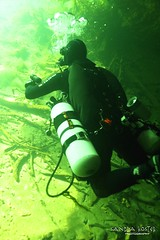 IMG_5948 (2) (SantaFeSandy) Tags: giant snapper turtle cave diving sinks lafayette blue springs state park sandrakosterphotography sandrakosterphotographycom sandykoster sandy sandra santafesandysandrakosterphotographycom sandrakoster algae green sink stevens 1 snake