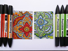 A little colouring (Heather Maria D) Tags: heroarts spicemarket largepetalbackground promarkers cg638