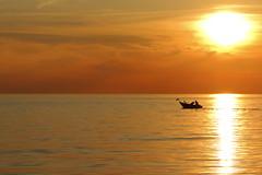 Man and The dog! (m.rsjoberg) Tags: steninge halmstad hav vatten water man dog sunset solnedgng siluett silhouette