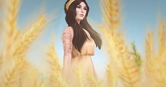 come away with me (Cassandra Middles) Tags: bella pace yellow golden hay wheat secondlife sl outdoors summer lelutka gold flowey stories co storiesco ikon essences maitreya collabor88 c88 event new release dress cureless veechi cherry blooms eyeliner