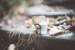 Coffee for Danbo (Pamba-) Tags: danbo yotsuba revoltech robot japan cute sweet coffee starbucks warm hot beverage stone cold autumn fall nature season