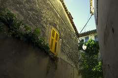 Le Cannet (julia janisson) Tags: yellow architecture nature south france volet house
