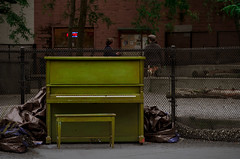 green (dotintime) Tags: green piano music instrument keyboard ivory sharp flat tune melody dog park urban entertainment tarp fence dotintime meganlane