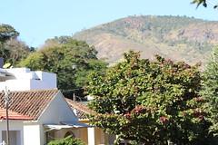 IMG_1517 (Henrique D'Agostini) Tags: another day paradise caratinga minas gerais mg