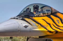 AIR FORCE BELGIAN. F-16 (31 TIGER SQUADRON). (Rodrigo Tran Corts) Tags: piloto pilot spotting zaragoza spain tiger tigermeet ntm2016 otan nato belgian air a airforce f16