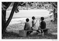 three boys (Alja Ani Tuna) Tags: 43 43365 365 35mm boys three threeboys summer tree plant shadow sun hot hotsummer nikond800 nikkor nature naturallight 300mmf4 f4 d800 dailyphoto day year onephotoaday onceaday bw blackandwhite black beautiful white blackwhite boy bench seating
