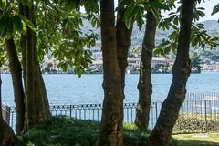 Orta 2106-10 (riccardo.bordese) Tags: piemonte piedmont lago ortasangiulio summer vacation holiday romantictrip