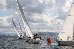 _VWO2838 (Expressklubben Rogaland) Tags: express nmexpress seiling stavangerseilforening