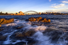 "Sunrise at Mrs Macquaries Point, Sydney, NSW (Nur Ismail Photography) Tags: ""sydney"" ""new south wales"" ""nsw"" ""sunrise"" ""rocks"" ""seaside"" ""mrs macquaries point"" ""tourist"" ""attraction"""