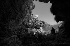 _DSC9640 (Boréalis91) Tags: fontdurles macrofamille vercors marmots voielactã©e