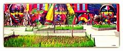 Grafitis (o.dirce) Tags: graffiti odirce riodejaneiro praçamauá boulevardolímpico maravilhosa cidademaravilhosa rio