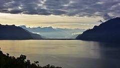 Lumire du matin sur le lac (Diegojack) Tags: paysages lavaux lman lumire chexbres routes corniche matin automne