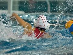 1A150247 (roel.ubels) Tags: uzsc zpb hl productions waterpolo eredivisie utrecht krommerijn 2016 sport topsport