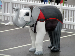 Elephantom by Kieron Rielly and Lynsey Brecknell, Herd of Sheffield Farewell Weekend 2016 (Dave_Johnson) Tags: meadowhall carpark shoppingcentre phantomoftheopera phantom elephantom kieronrielly lynseybrecknell herdofsheffield herd elephant elephants art streetart sculpture sheffchildrens sheffieldchildrenshospitalcharity sheffieldchildrenshospital childrenshospitalcharity childrenshospital sheffield southyorkshire