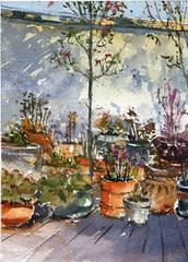 Hector's (Sherry Schmidt) Tags: art painting pleinair plants patio pots succulents shade sierramadre california city garden gardening