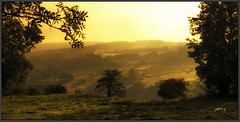 Autumn Recipe.. (Picture post.) Tags: landscape nature green autumn mist hills trees shadows fields countryside paysage arbre interestingness golden hour sunrise morning