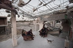 Palestinian youngsters sit in their family destroyed house, damaged  during the last Israeli aggression on the Gaza (TeamPalestina) Tags: gaza palestinian freepalestine live photo photographer natural  palestine nice am innocent occupation landscape landscapes reflection blockade hope canon nikon