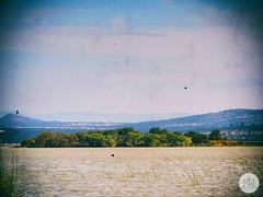 EN LA ISLA (Gabriel Contreras Tzintzun) Tags: lago laguna atlangatepec turistas isla lancha turismo naturaleza entrenamiento tranquilidad paz descanso visitar vacacionar familia