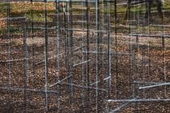 Structures 69 (pni) Tags: playground equipment structure metal leaf grass ground multiexposure multipleexposure tripleexposure munkkiniemi munksns helsinki helsingfors finland suomi pekkanikrus skrubu pni