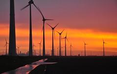 Sun + Wind = Energy (powerfocusfotografie) Tags: morning sky horizontal sunrise landscape outdoors energy mood power nopeople electricity henk windturbines eemshaven nikond90 powerfocusfotografie